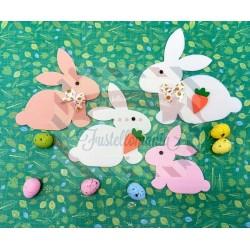 Fustella L Conigli e carota
