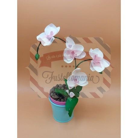 Fustella M Orchidea