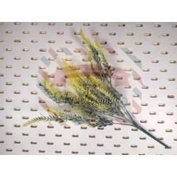 Rametto con fiorellini gialli